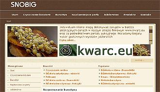Snobig.pl